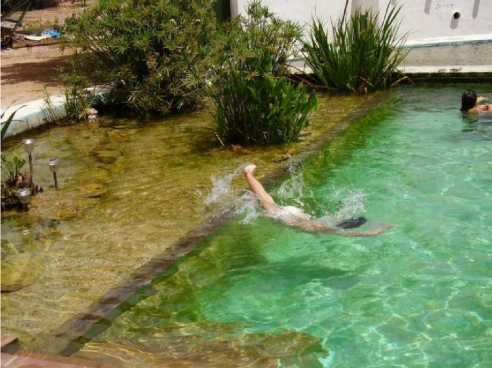 El mundo de la piscina for Filtros para lagos artificiales